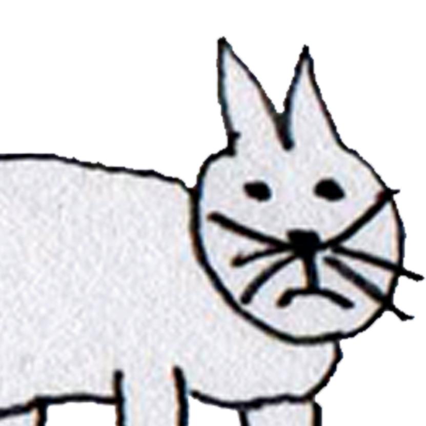 Admin Cat! Admin Tips. (1/2)