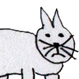 Admin Cat Face