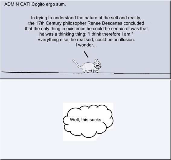 Admin Cat Cogito ergo sum copy