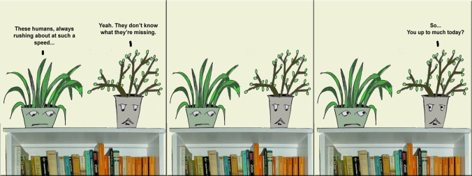 plant heads talking test 1 copy