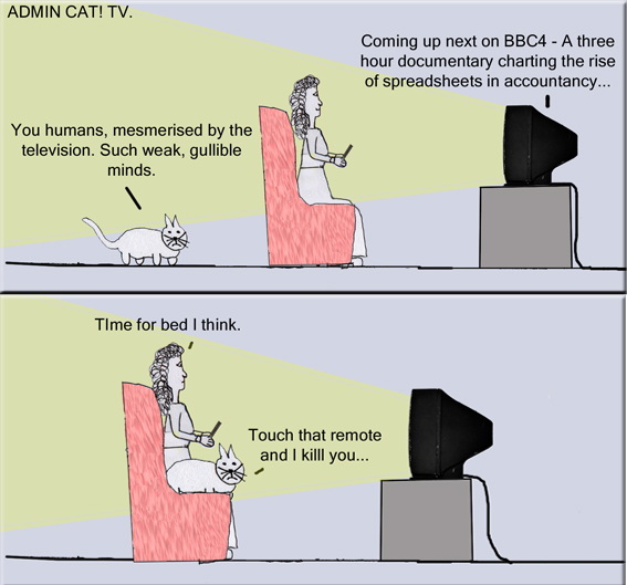Admin Cat TV copy