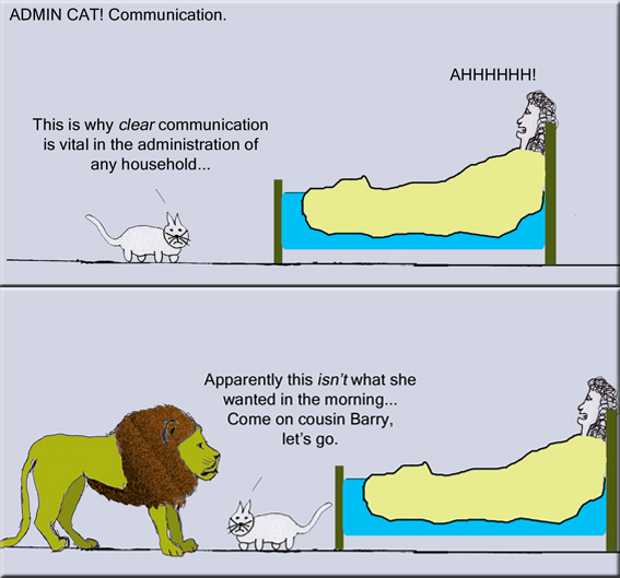 Admin Cat Communication copy