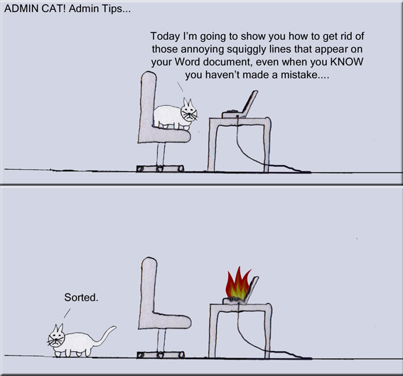 Admin Cat Admin Tips copy