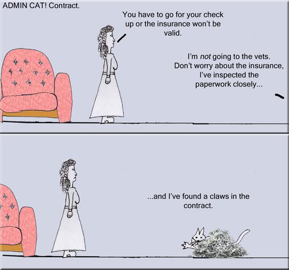 Admin Cat Contract copy