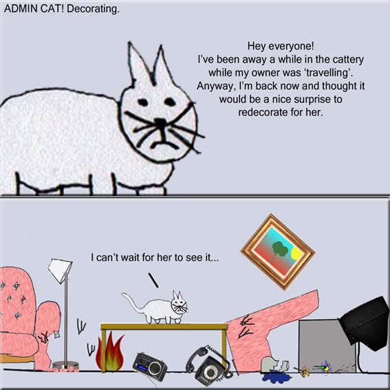 Admin Cat Decorating copy